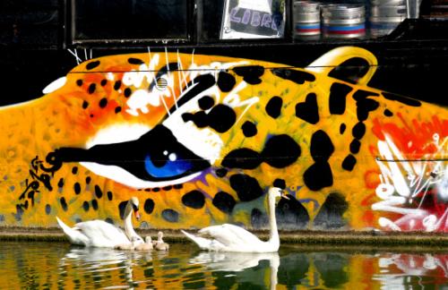 sous l'oeil du tigre